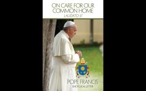 pope blog 7.14